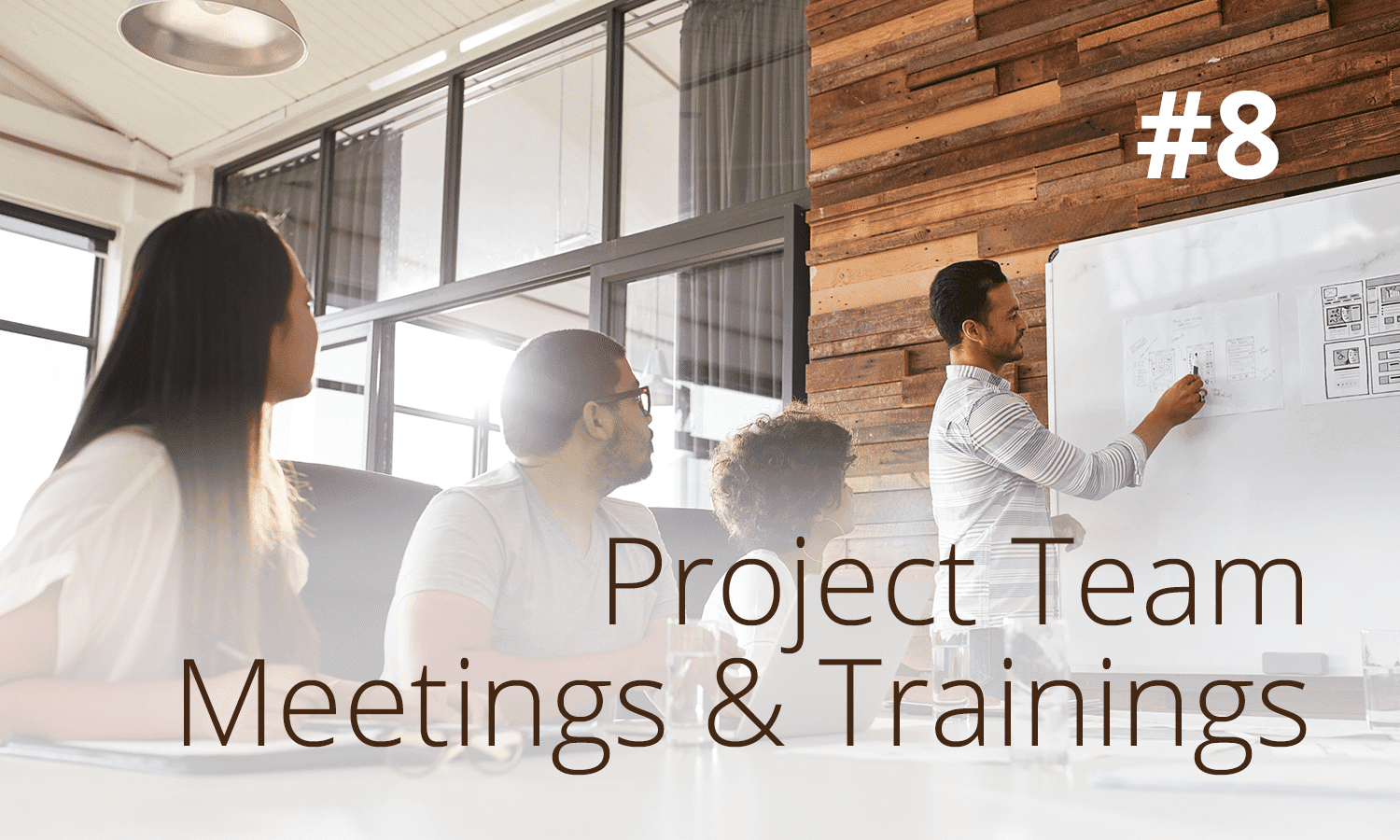project team meetings and trainings