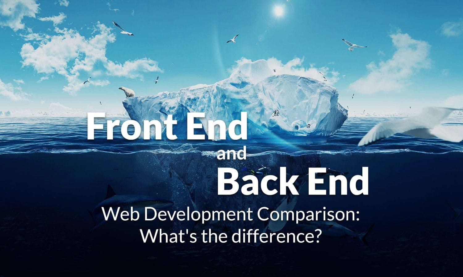 frontend vs backend development