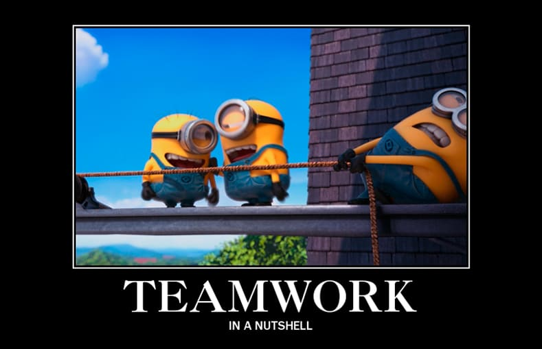 teamwork in a nutshell
