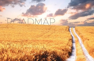 Roadmap to small business